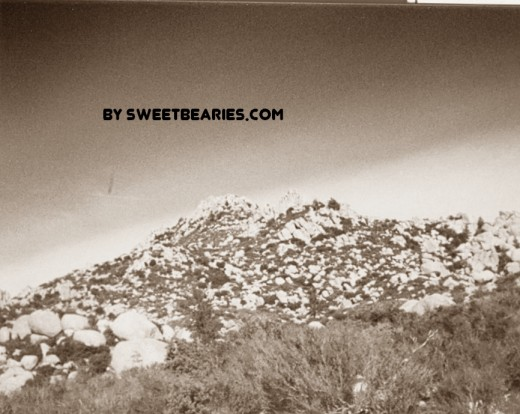 Here is a picture that I took hiking out at the Pinnacles in 1988! I scanned my photo and used sepia effects to create this amazing image.