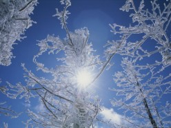 SUNLIGHT BOUNCING OFF THE SNOW
