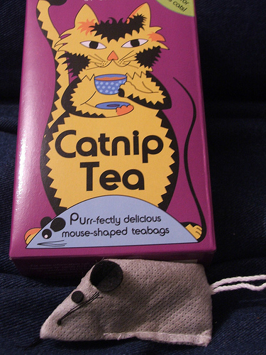 Though irritating for cats, catnip tea is super-relaxing for humans!