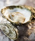 Oyster is healthy seafood and a source of Zinc.Nutrients, benefits, information, history and recipe!