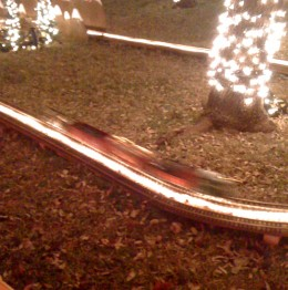 An electric train around the tree.