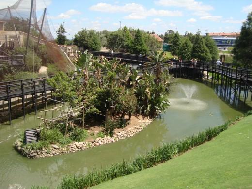 Water feaures