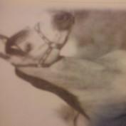 oldhorse profile image