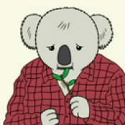 radiokoala profile image