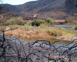 Erjos pools after the fire