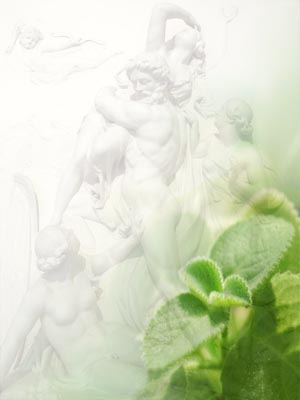 PS composition by Siu Ling Hui: Mint ( Croisy|Shutterstock.com) against marble relief of Pluto & Persephone ( Tony Baggett - Fotolia.com)