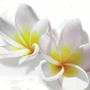 Wahine profile image