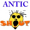 antic shout profile image