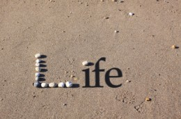 Organize Your Life For Big Rewards
