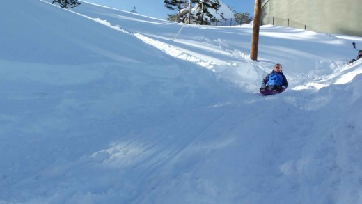 Sledding down Needle Peak Rd is a good 25 yd run or more if you climb the hill to the left