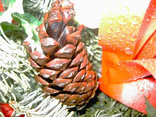 PINE CONES ARE UTILISED IN FLORAL ARRANGEMENTS.