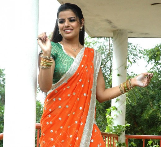 Madhu Sharma in  saree