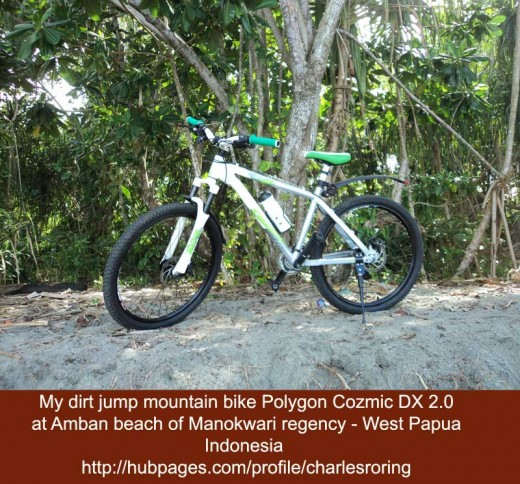 My dirt jump mountain bike Polygon Cozmic DX 2.0