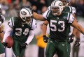 New York Jets' Josh Mauga (53) celebrates with New York Jets cornerback Marquice Cole (34) after Cole intercepted his second ball against the Buffalo Bills Sunday January 2, 2011. Jets win 38-7. Saed Hindash/The Star-Ledger