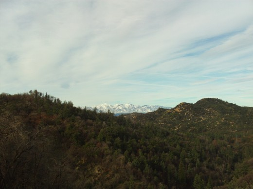 This picture was taken on a cold morning in late December in the San Bernardino Mountains.