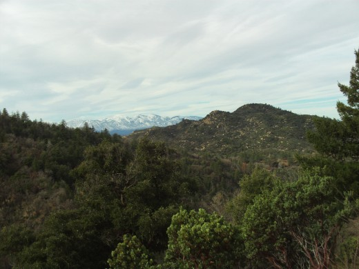 All the beautiful sights to see while walking around the San Bernardino Mountains.