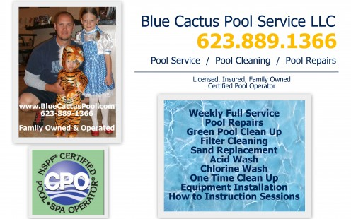 Phoenix Pool Service and Repair Blue Cactus Pool Service