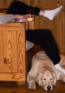 Drinking while a dog sleeps beneath your feet is often a fantastic way to pass the time.