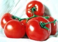 Creamy Tomato Parmesan Soup Recipe