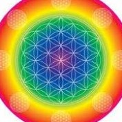 Flower of Life profile image