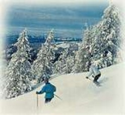 The winter skiing experience