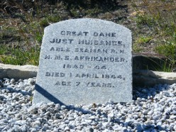 AB Just Nuisance's grave. Photo by Andrew Massyn/Wikipedia
