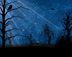 Moons call...A werewolf poem