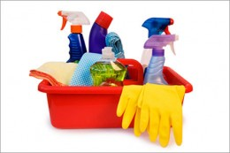Happiness is a clean and shining home, but there have to be limits?