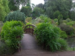 Bridge in Queen Mary Garden, Regents Park
