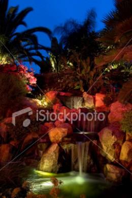 Garden Light Beauty