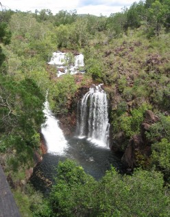 Florence Falls - come on down the swimming is fine