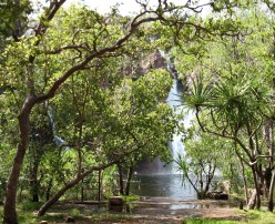 Wangi Falls - closed to swimming in the wet season due to deadly undertows.