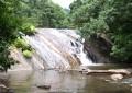 Dhoni falls