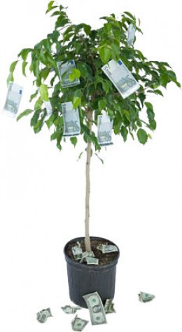 When you understand how your investments work, it's almost like having a money tree.