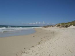 Near Cottesloe Beach, West Australia