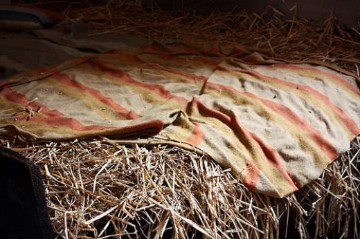 Ella's straw bed