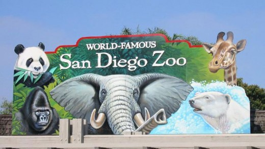 Worl famous San Diego Zoo sign
