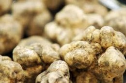 White truffles... not of the Chocolate variety!