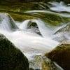 pisean282311 profile image