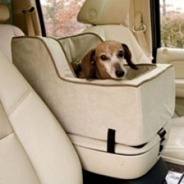 Cool car seats for dogs
