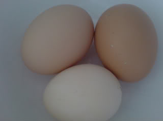 Eggs By superjules_photos, source: Photobucket