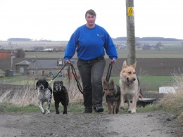 Walk your dogs By ladylignite, source: Photobucket