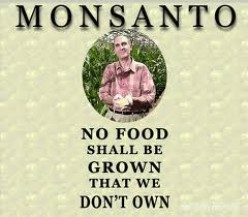 Monsanto's Poisonous and Carcinogenic  Milk