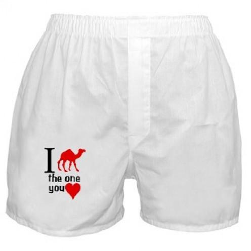 Red Camel Brandwear Boxers