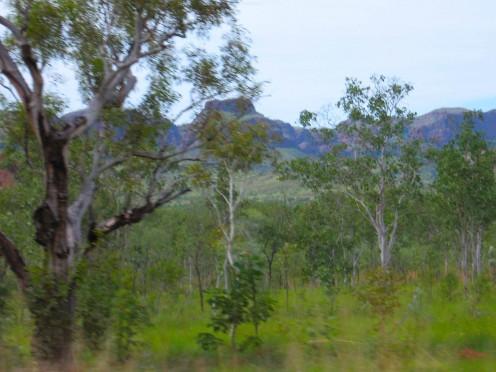Blurred landscape in the style of Albert Namitjira