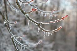 Great Indoor Winter Activities for Kids