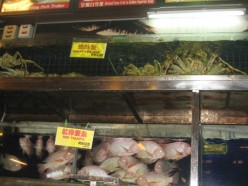 Exotic Foods in Asian Countries