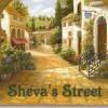ShevaStreet profile image