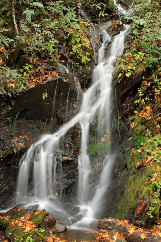 Enjoy a waterfall in the Great Smoky Mountains.