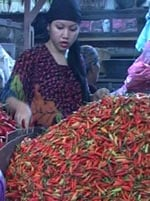 Many women are stunned by chili price. A view in a chili market.